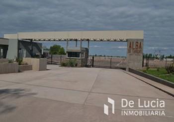 LOTEO ALBA DE TANQAY BOEDO VIEYTES - Alba De Tanqay - Maipu | Mendoza