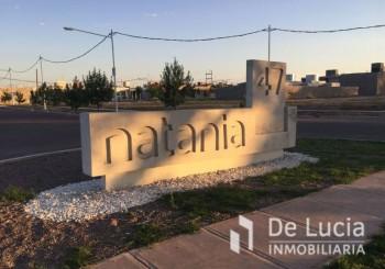 Maipu- Natania 47 - - Maipu   Mendoza