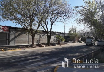 Alto Dorrego- Moldes - - Guaymallen   Mendoza